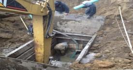 Marut Amp Sons Excavating